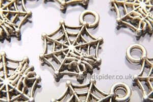 Spiderweb Charm
