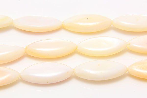 White Natural Shell