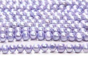 Blue Potato Pearl